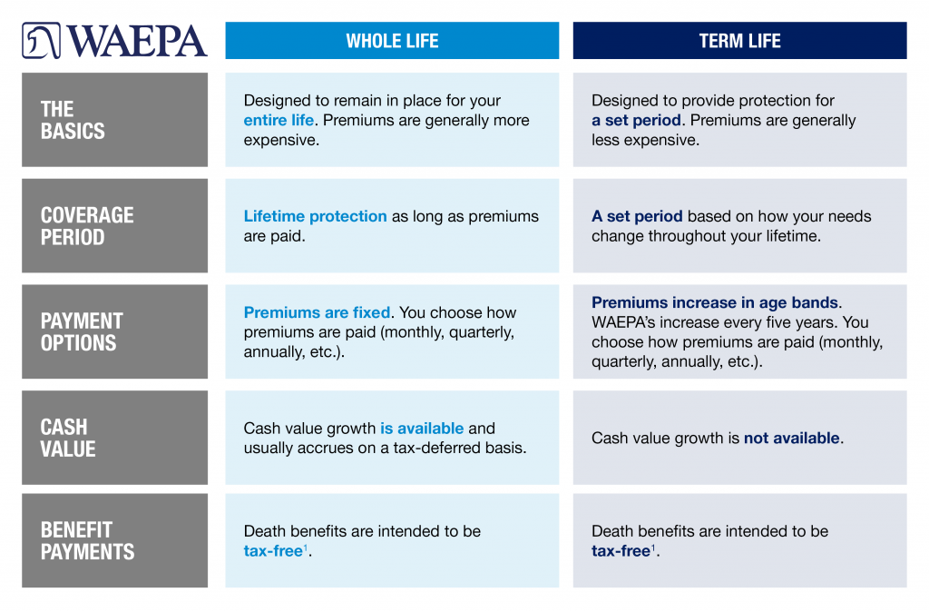 Chart comparing the key differences between term life insurance and whole life insurance. Comparison covers: coverage period, payment options, cash value, benefit payments.